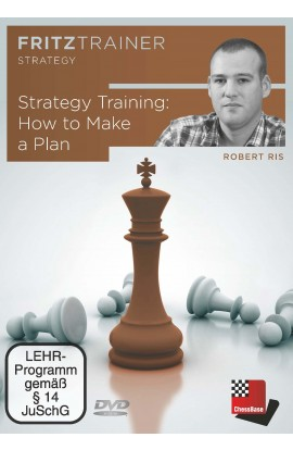 Strategy Training - How to Make a Plan - Robert Ris