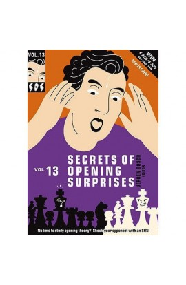 CLEARANCE - Secrets of Opening Surprises - VOLUME 13