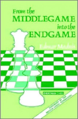 From  the Middlegame into Endgame