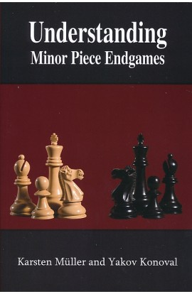Understanding Minor Piece Endgames