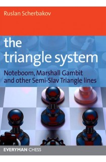 SHOPWORN - The Triangle System