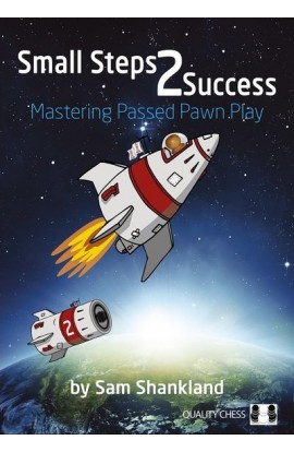 Small Steps 2 Success - PAPERBACK